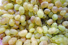 Background of the grape Royalty Free Stock Photography