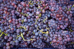 Background of grapes Stock Photo
