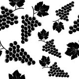 Background with grapes. Against white Stock Images