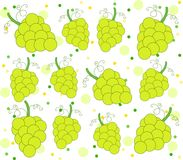 Green grape pattern and dots. Background with grapes and dots in green. Clean design. Vector file available Stock Image