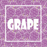 Background from Grapes. Vector Illustration Royalty Free Stock Images