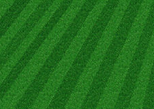 Background Grass. Diagonal Grass stock photo