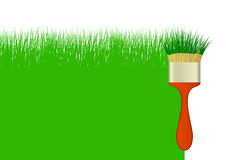 Background with grass and brush; Фон с травой и ки Stock Images