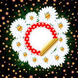Background with grass and camomile Stock Photo