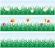 Background grass and flowers. Vector background grass and flowers Stock Photo