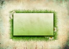 Background of grass and frame Royalty Free Stock Photography