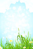 Background with Grass and Sky Royalty Free Stock Photos