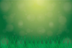 Background grass Stock Photo