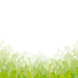 Background grass (vector) Stock Photos