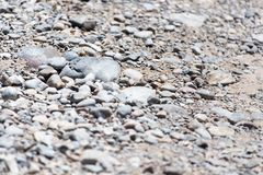 Background of gravel and sand . Stock Photos