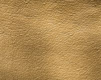 Background of gray leather Stock Photography