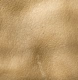 Background of gray leather Stock Photo