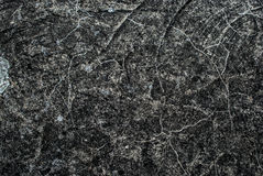 Background from a gray rough surface of stone Stock Images