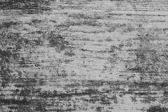 Magnificent wooden background in gray tone royalty free stock photography
