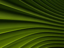 Background of green abstract waves. render. Background of green 3d abstract waves. render Stock Images