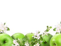 Background with green apples and flowers Royalty Free Stock Photography