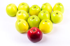 Background of green apples with one red apple. Concept Stock Photos