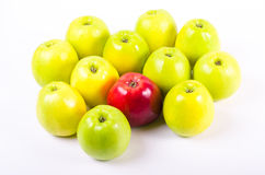 Background of green apples with one red apple. Concept Royalty Free Stock Photography