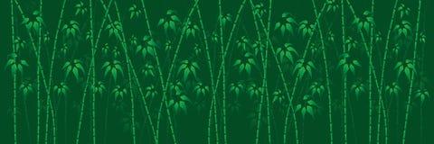 Background green bamboo Stock Photos