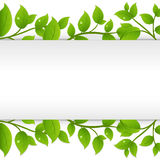 Background With Green Branches. Vector Stock Photo