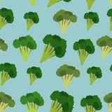 Background of the Green brokkoi. Vector seamless pattern of vege Stock Photography