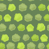 Background of green cabbage. Vector seamless pattern of vegetable Stock Images