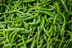 Background of green chillies Stock Image