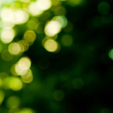 Background in green colors Royalty Free Stock Photography
