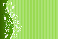 Background green floral with strips Stock Image