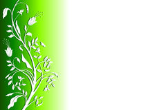 Background green floral Stock Photography