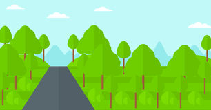 Background of green forest. Royalty Free Stock Photo