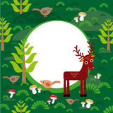 Background green forest with deer fir trees mushrooms birds. veccor Royalty Free Stock Images