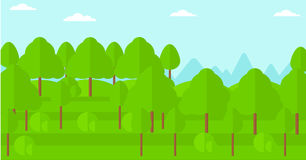 Background of green forest. Royalty Free Stock Photos