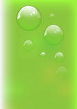 Background green and fresh Royalty Free Stock Photography