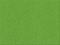 Background a green grass Royalty Free Stock Images