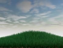 Background green grass and blue sky, 3d render Stock Image