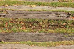 Background of green grass and brown wood. Royalty Free Stock Photo