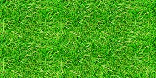 Background of green grass royalty free illustration