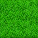 Background of green grass stock illustration