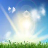 Background With Green Grass. Stock Images
