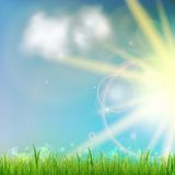 Background With Green Grass. Background With Green Grass And Sunburst. EPS10 Stock Image