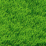 Background of Green Grass. Vector Illustration for your design Royalty Free Illustration