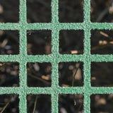 Background Green Lattice Stock Image