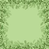 Background, green leaves Stock Photography