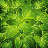 Background with green leaves Royalty Free Stock Photos