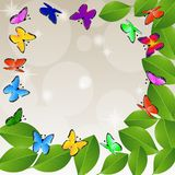 Background  with green leaves and butterflies Royalty Free Stock Image