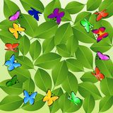 Background  with green leaves and butterflies. Vector  illustration Royalty Free Stock Photos
