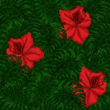 Background of green leaves of monstera and red azalea flowers royalty free illustration