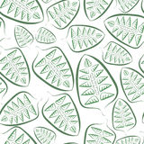 Background of green leaves Royalty Free Stock Photos