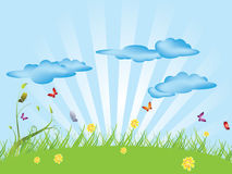 Background green meadow vector illustration